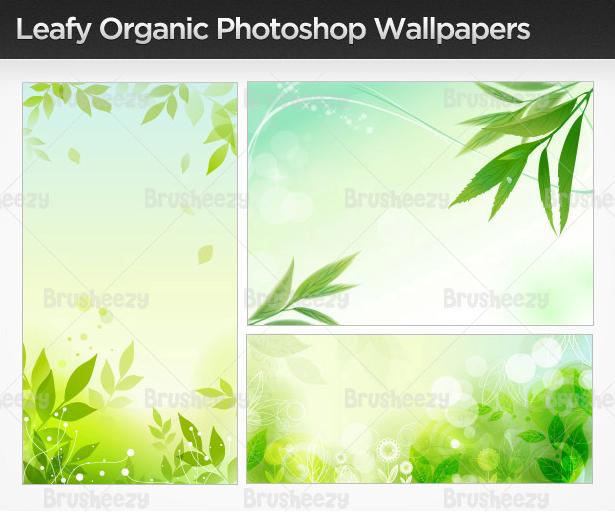 Leafyorganicwallbrush