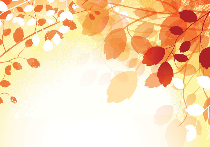 Warm Autumn Photoshop Wallpaper