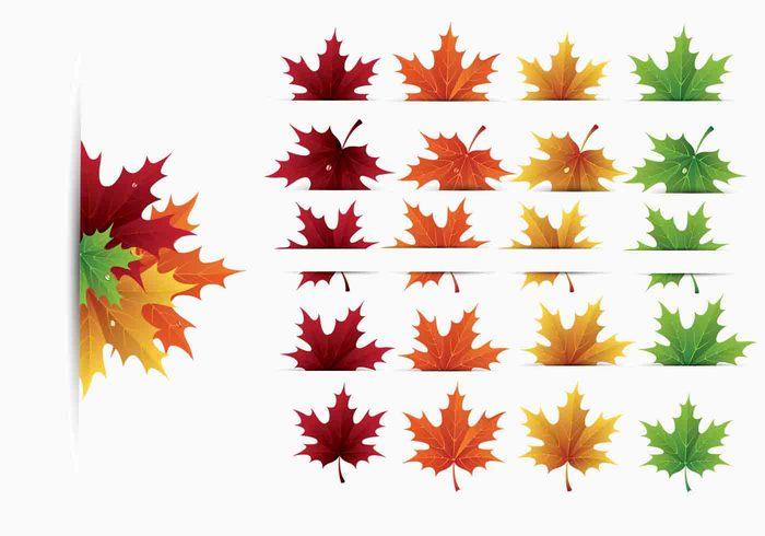 Maple Leaves Brush Pack