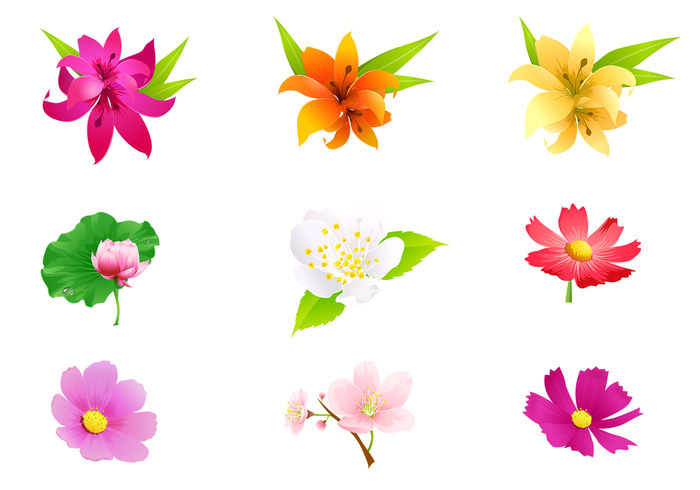 Tropical Flower PSD Pack