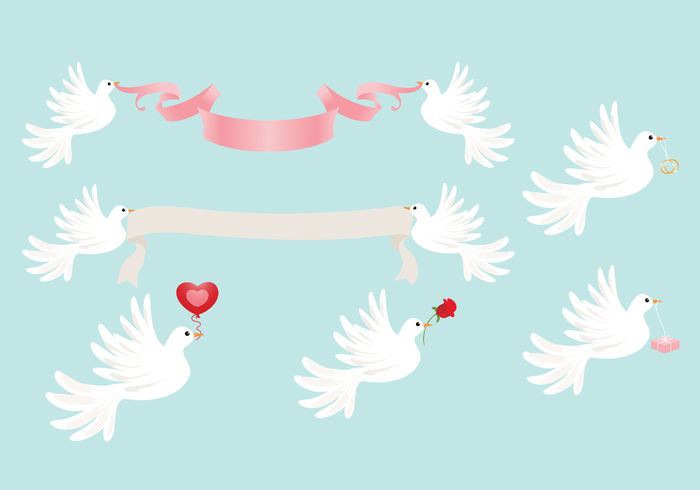 Wedding Dove PSD and PNG Pack