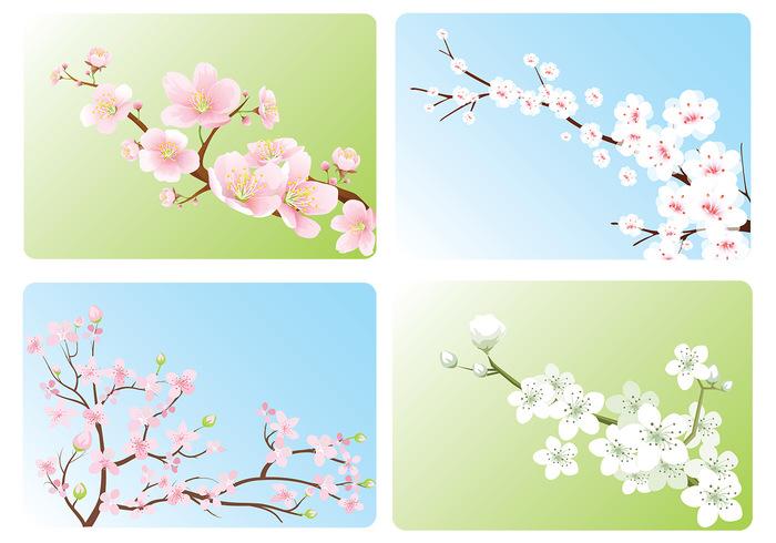 Cherry Blossom Wallpaper Pack