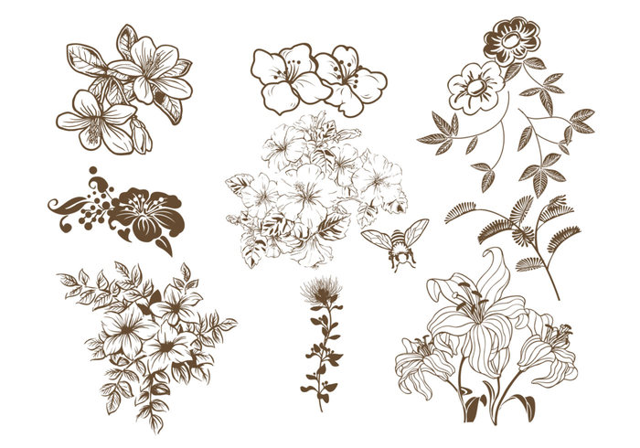 Hand Drawn Floral Brush Pack