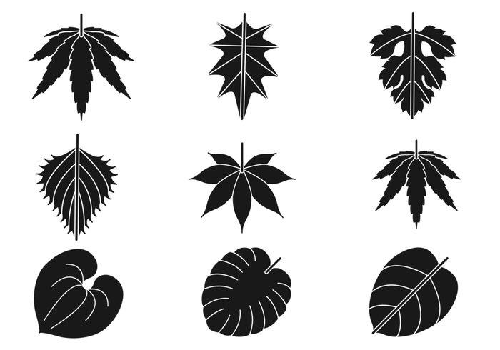 Leaves Silhouette Brush Pack