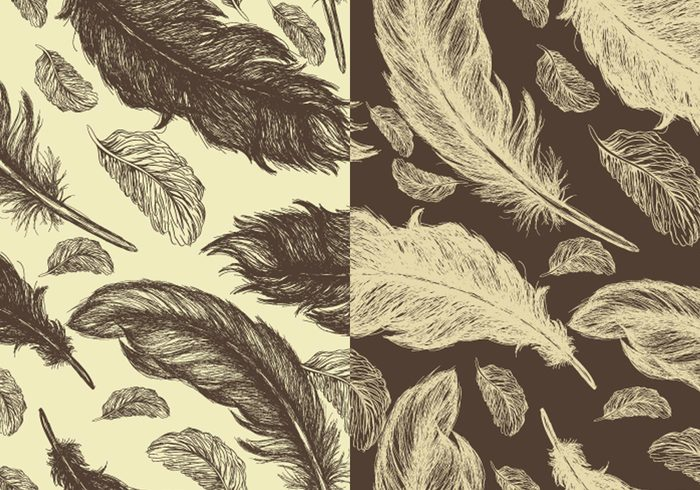 Seamless Hand Drawn Feather Pattern Pack