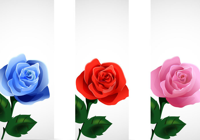 Rose Banners Pack