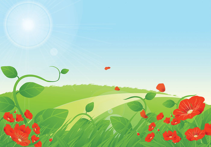 Summer Poppies Floral Background