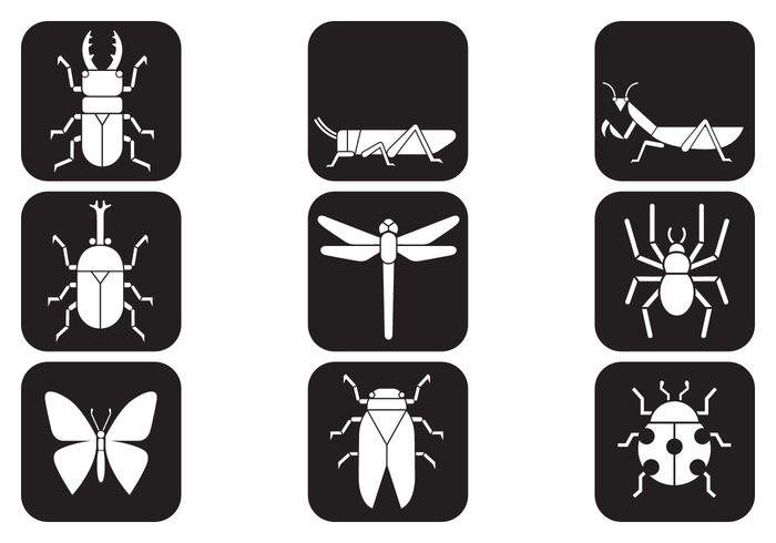 Insect Brush Icons Pack