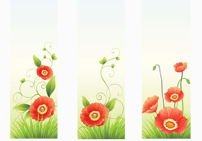 Red Poppy Banner Backgrounds