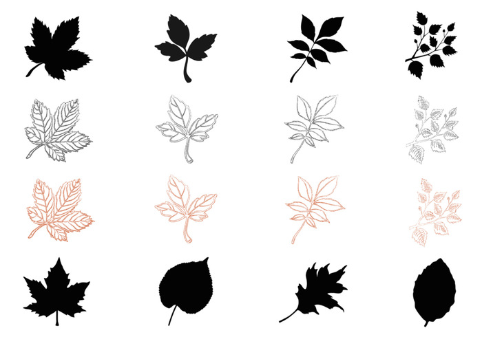 Silhouette Fall Leaves Pinsel Pack