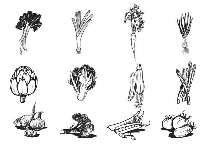 Hand Drawn Vegetable Brush Pack