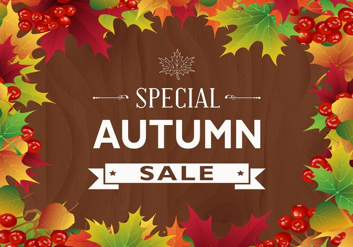 Colorful Autumn Leaf Sale PSD Background