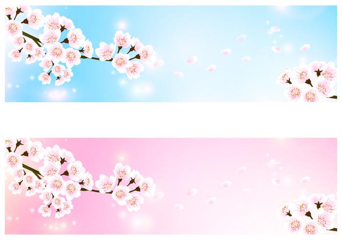 Cherry Blossom Banner Background Pack