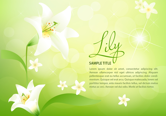 Spring Lily Background PSD