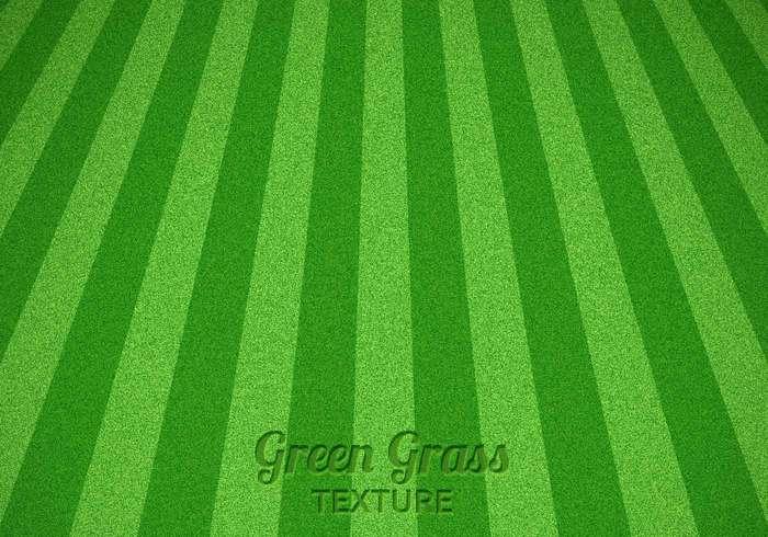 Gemaaid groen gras textuur psd