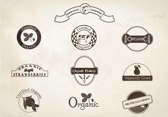Retro Organic Labels Brushes