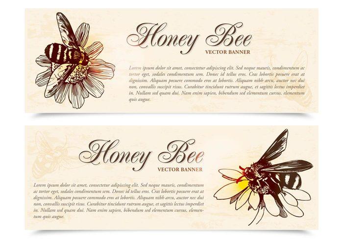 Honey Bee Banners PSD Set