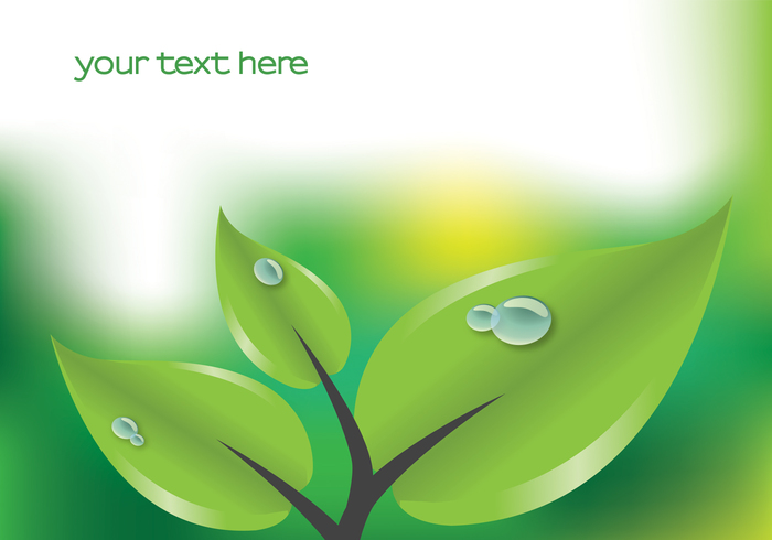 Green Leaf with Droplets Background PSD