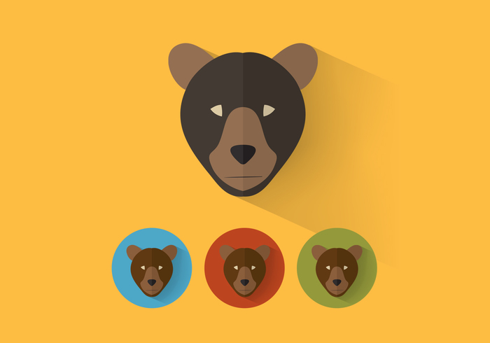 Bear PSD