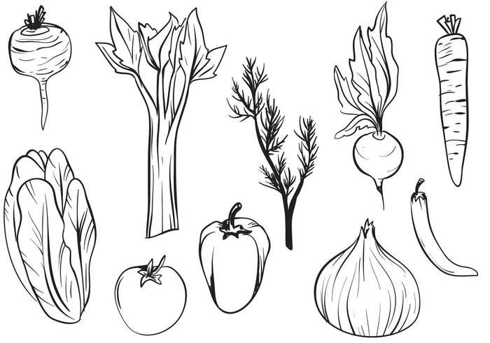 Hand Drawn Vegetable Brushes