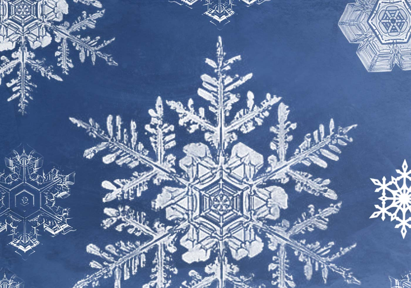 Realistic Snowflakes | Brush Packs For Photoshop ...
