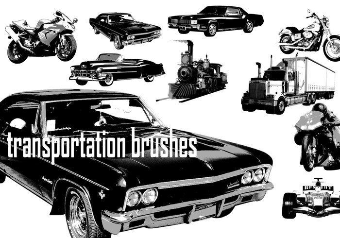 Transportation Brushes