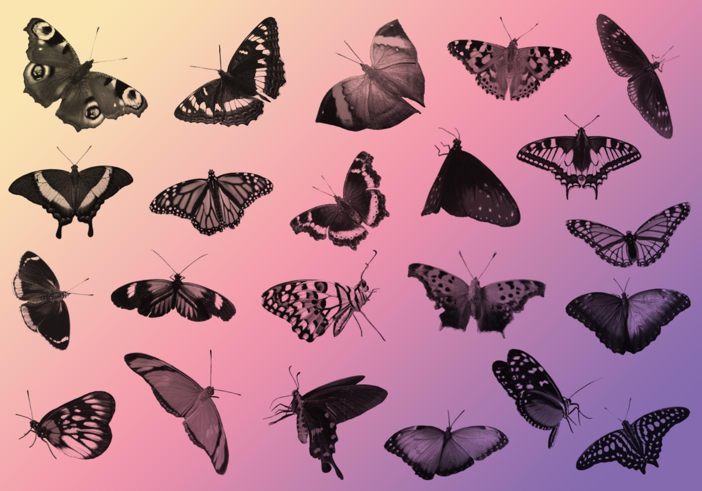 23 free butterfly photoshop brushes free photoshop brushes at