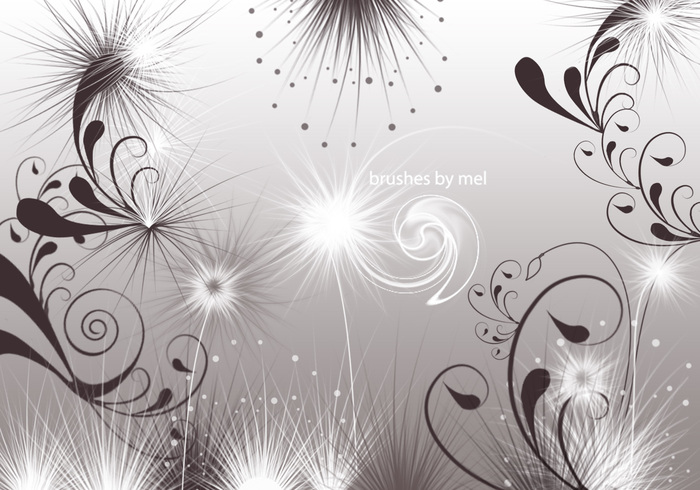 Swirls and Seeds Photoshop Brushes