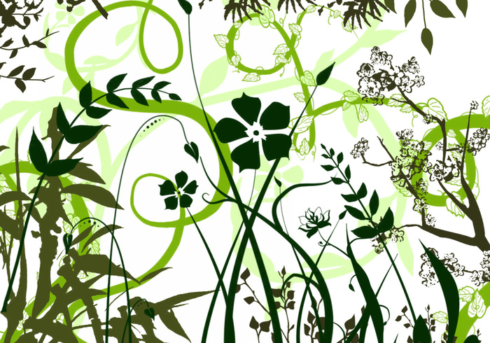Vector Follaje-Plantas Photoshop Brushes