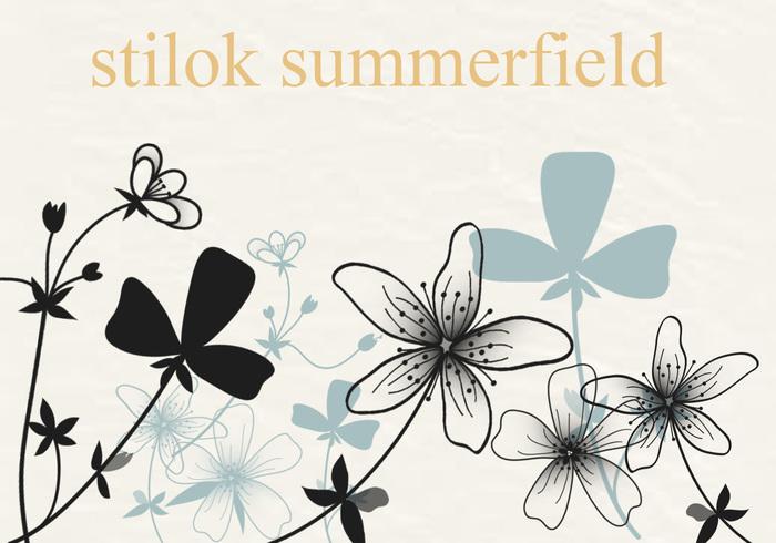 Campo de verano