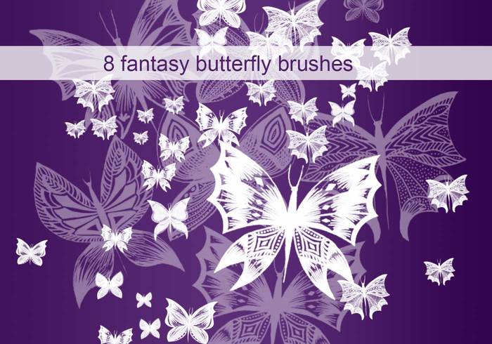 Brosses fantaisie papillon