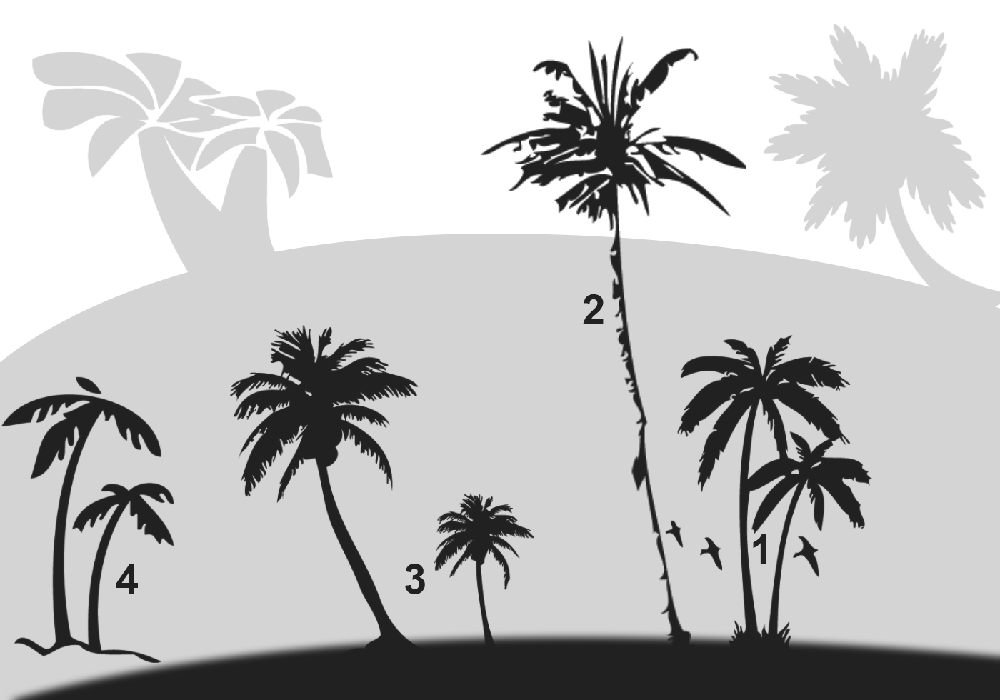 Palm Trees Photoshop Brushes