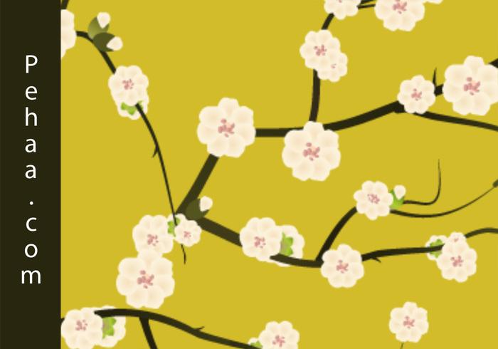 Primeras flores de la primavera