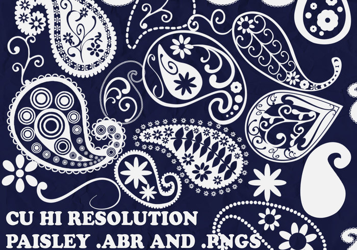 Funky Paisley Brushes
