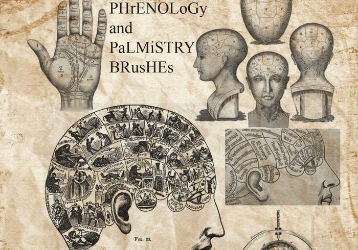 Phrenology Brushes