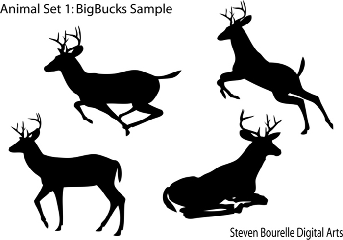 Ensemble animal 1: bigbucks