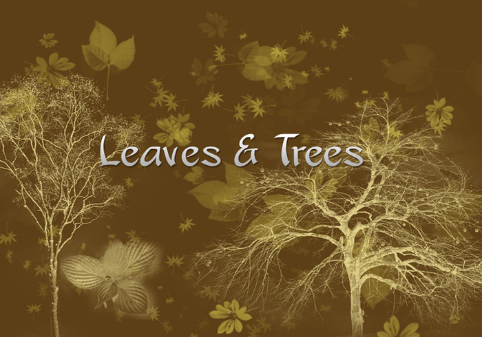 Leaves & Trees