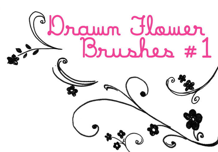 Drawn Flower Brushes
