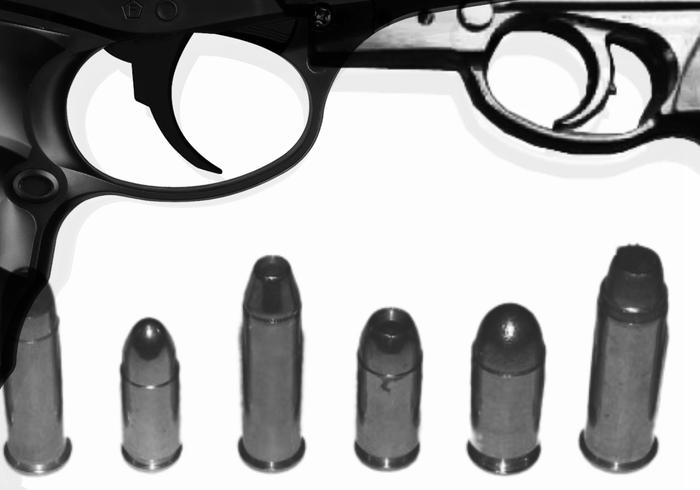 Escovas de armas de fogo