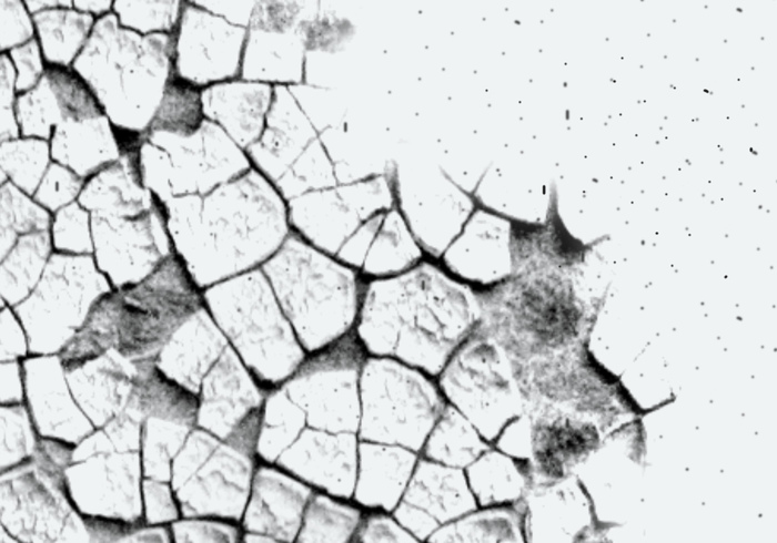 Cracks Brushes III
