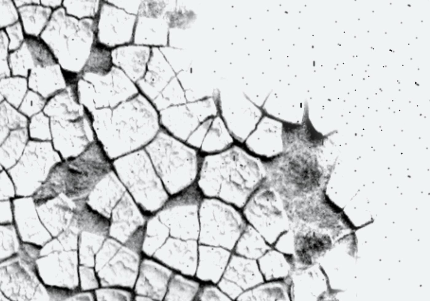 cracks brushes iii
