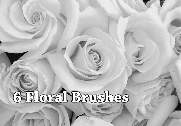 6 Stunning Floral Brushes