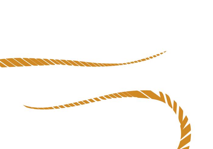 Cepillo de cuerda