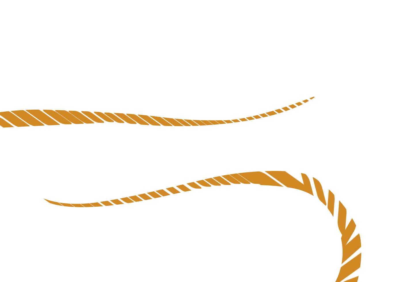 Rope Brush Free Photoshop Brushes At Brusheezy