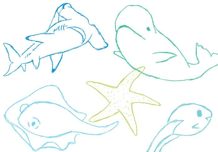 Mais peixe