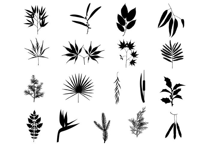 Beautiful Branches Brush Pack