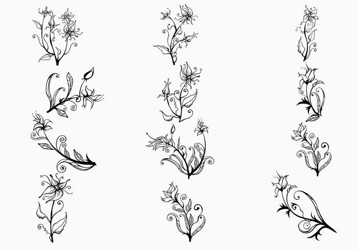 Escovas de flores desenhadas à mão