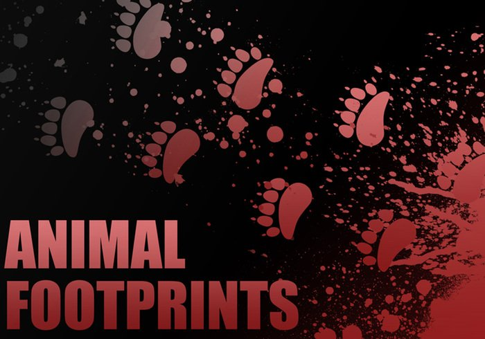Individuele Animal Footprint Brushes