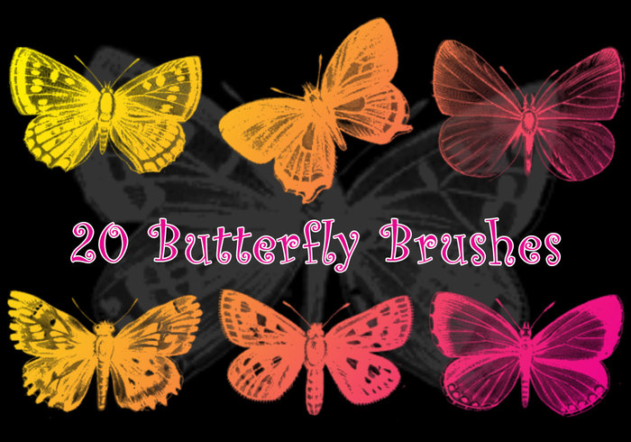 20 Butterfly Brushes