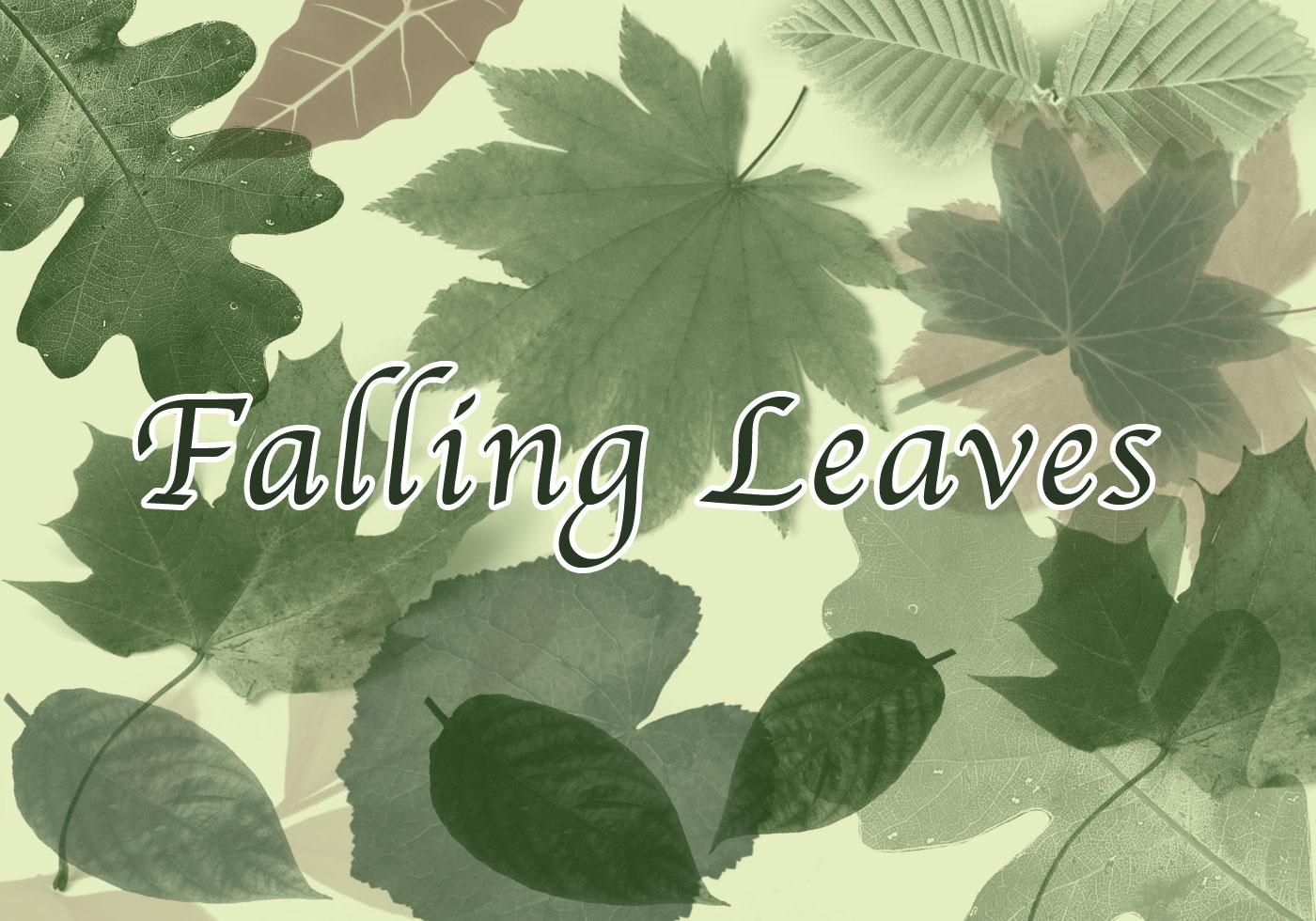 falling leaves free photoshop brushes at brusheezy